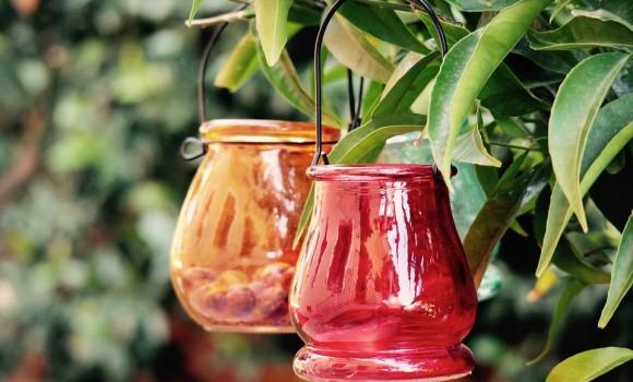 Come trasformare bottiglie in vasi colorati per i nostri fiori