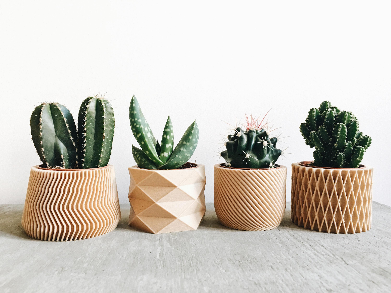Set vasi fioriera cactus creativi stampati  3D in legno - idee decoro ufficio