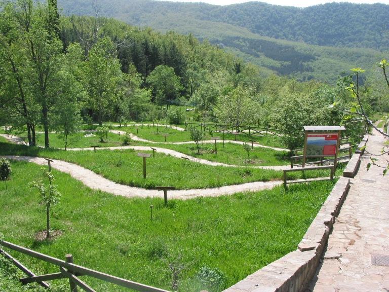 149218972678-parco_di_gallipoli_cognato.jpg